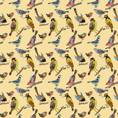 Pattern with birds. Decorative ornament with bird