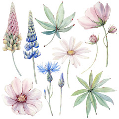 Watercolor country flowers set in vintage style.