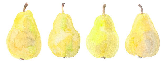 Yellow pears isolated on white. Watercolor illustration