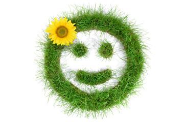 Smiley aus Gras mit Sonnenblume