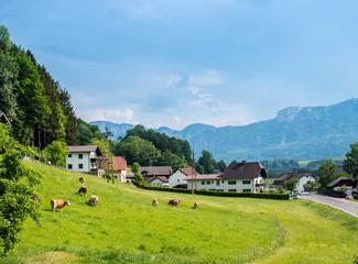 Landschaft im Salzkammergut