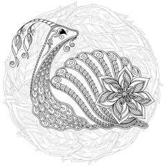 Illustration of a snail.