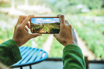Asian women relax in the holiday. Hand with photo mobile phone. Photographing a strawberry farm. In thailand