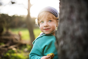 A happy toddler boy hiding behind tree outside in spring nature.