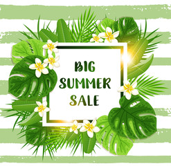 Summer tropical background for seasonal sale
