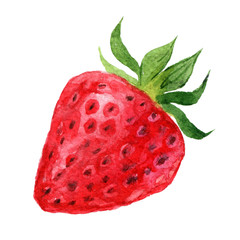 Strawberry isolated on white background, watercolor illustration