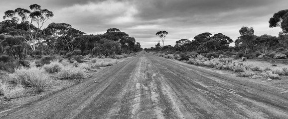 Wall Mural - Typical unsealed road within the outback of Western Australia