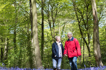 Senior Couple Walking Hand In Hand Through Bluebell Wood