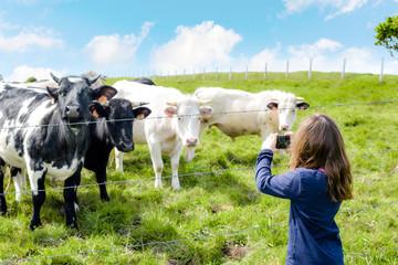 enfant prenant les vaches en photo