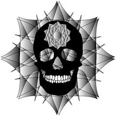 Human Skull Geometry and design