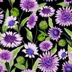 Beautiful blue and purple daisy flowers with green leaves on black background. Seamless spring pattern. Watercolor painting. Hand painted floral illustration.