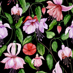 Beautiful fuchsia flowers on climbing twigs on black background. Seamless floral pattern. Watercolor painting. Hand painted illustration.