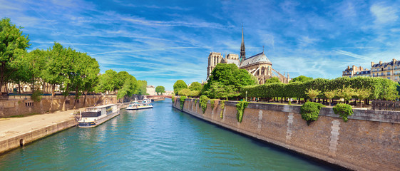 Wall Mural - Notre Dame Cathedral in Paris in Spring