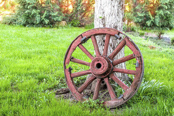 Decorative old trolley wheel stands near the tree in the garden as decoration