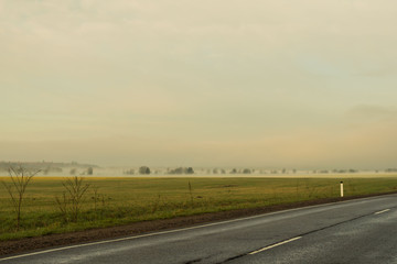 Empty road, fog on the field and forest on horizon