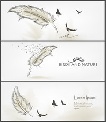 feather banner for facebook vector Design