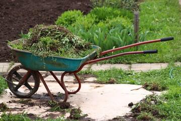waiting wheelbarrow