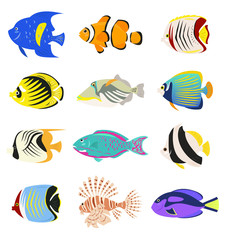 Set of cute tropical fishes on white background.