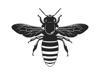 Image of the bee silhouette. View from above. Vector illustration.