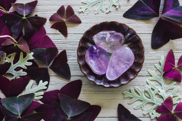 Amethyst with Dusty Miller and False Shamrock