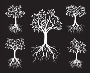 Set of white Trees with Leaves and root on black background.