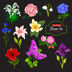 Flower icon of garden and tropical flowering plant