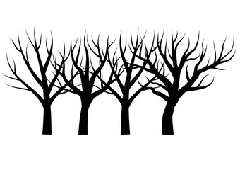 Bare trees vector illustration