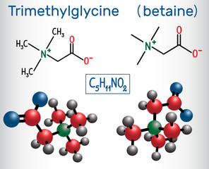 Trimethylglycine (TMG, betaine, glycine betaine), is found in sugar beets.  Structural chemical formula and molecule model.