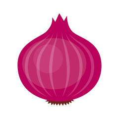 Red or purple bulb onion vegetable flat vector icon for food apps and websites