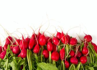 large group of fresh radishes isolated on white