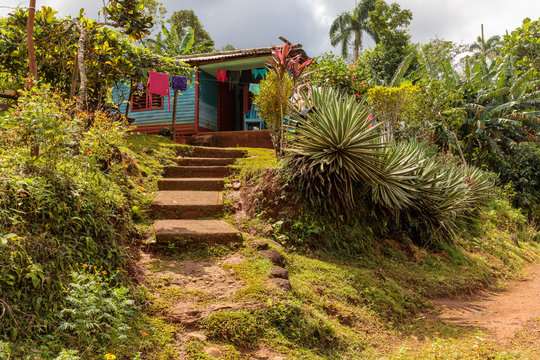 view on a residential house from the road in alejandro de humboldt national park near baracoa cuba