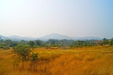 goa landscape