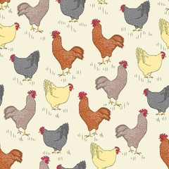 Seamless pattern with bird - rooster and chicken and grass on light yellow background vector illustration for wallpaper and food background. Cocks and hens pattern