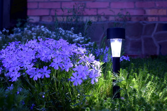 Lamp on the solar panel in the garden.