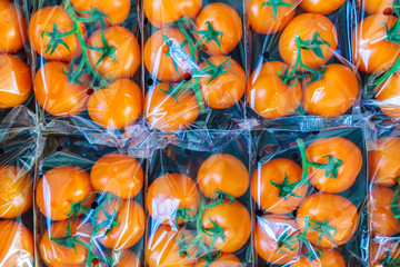 Fresh orange cherry tomatoes