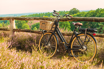 Electric black cargo bicycle with basket in Dutch national park The Veluwe