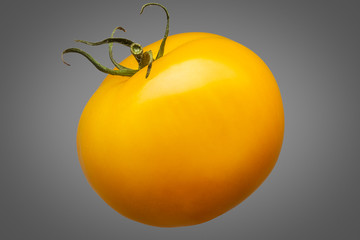 Delicious single yellow tomato isolated on grey background with clipping path