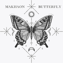 illistration butterfly makhaon sketch with shapes