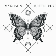 hand drawn illistration butterfly makhaon sketch with shapes