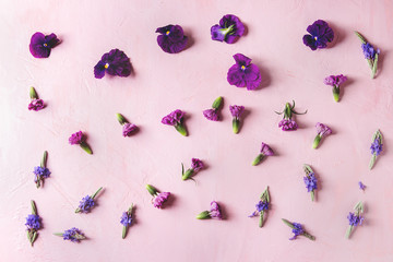 Variety of purple edible flowers for dish decorating over pink pastel background. Top view, space.