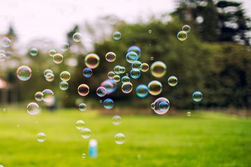 bubbles agianest blur spring forest park background