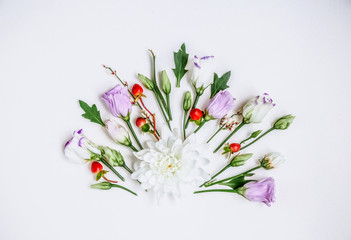 Lovely unique flower and twigs of the plant on white background.