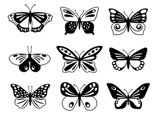 Black and white butterflies