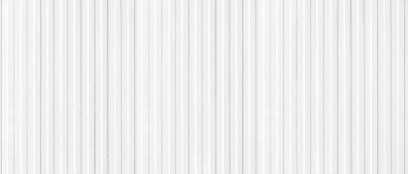 white zine plate background