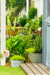 Relaxing area in cozy home./ Relaxing area decoration with flower pot in front of cozy home on summer.