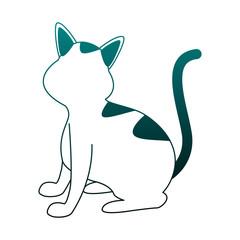 Cute cat cartoon vector illustration graphic design