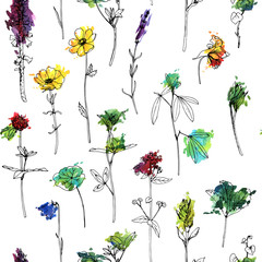 Vector seamless pattern with herbs and flowers
