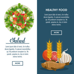 Delicious salad healthy food banner with information vector illustration graphic design