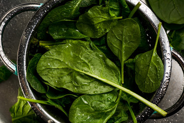 Fresh spinach leaves in strainer