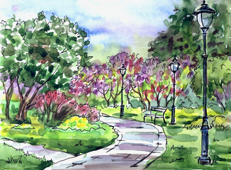 Park lilac garden, watercolor illustration. Landscape of the park with a blossoming lilac, bench and lanterns in Moscow, hand drawing, sketch.